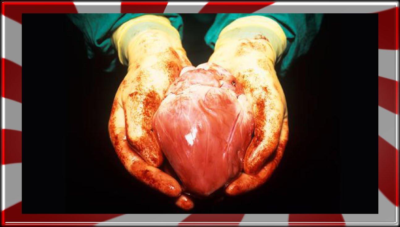 5 Hechos sorprendentes del corazón que quizás no conocías